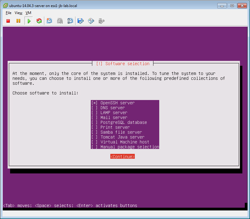 Building Ubuntu Server as a VM on ESXi